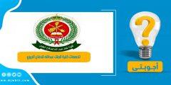 تخصصات كلية الملك عبدالله للدفاع الجوي