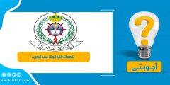 تخصصات كلية الملك فهد البحرية